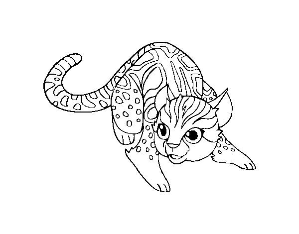 Dibujo de Gato salvaje africano para Colorear - Dibujos.net