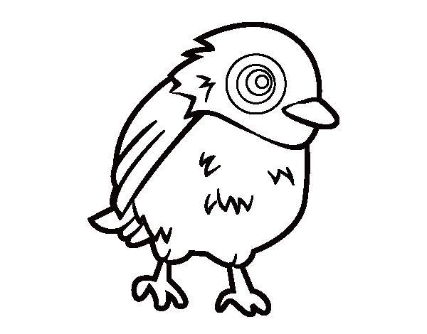 Dibujo de Gorrión común para Colorear - Dibujos.net