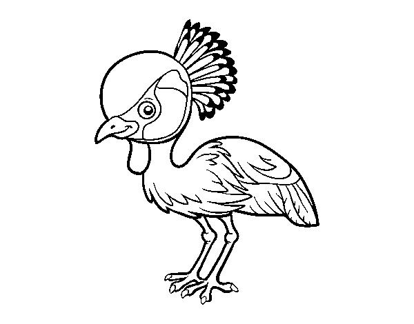 Dibujo de Grulla coronada cuelligris para Colorear - Dibujos.net