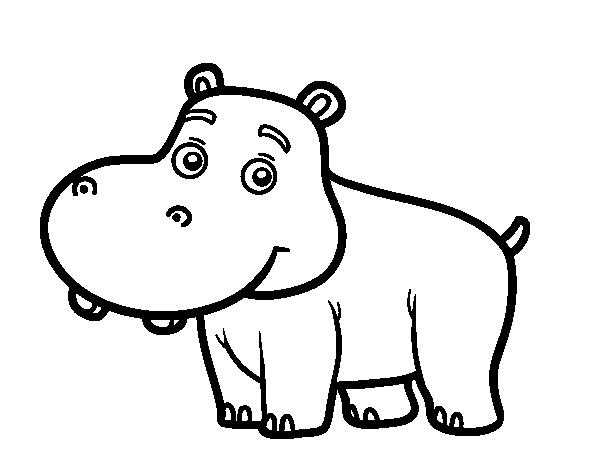 Dibujo de Hipopótamo joven para Colorear - Dibujos.net