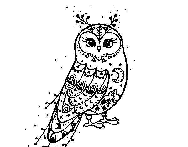 Dibujo de Lechuza de invierno para Colorear - Dibujos.net