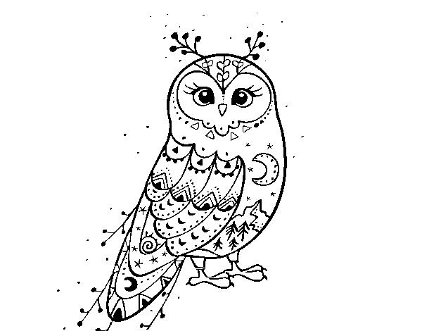 Dibujo De Lechuza De Invierno Para Colorear Dibujosnet