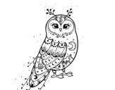 Dibujos De Búhos Mas Visitados Para Colorear Dibujosnet