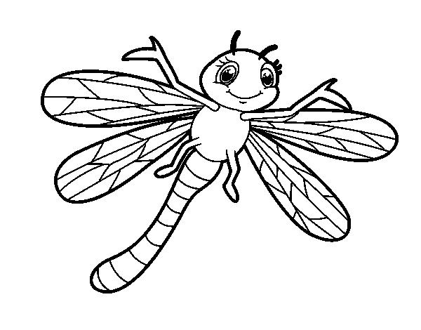 Dibujo de Libélula infantil para Colorear   Dibujos.net
