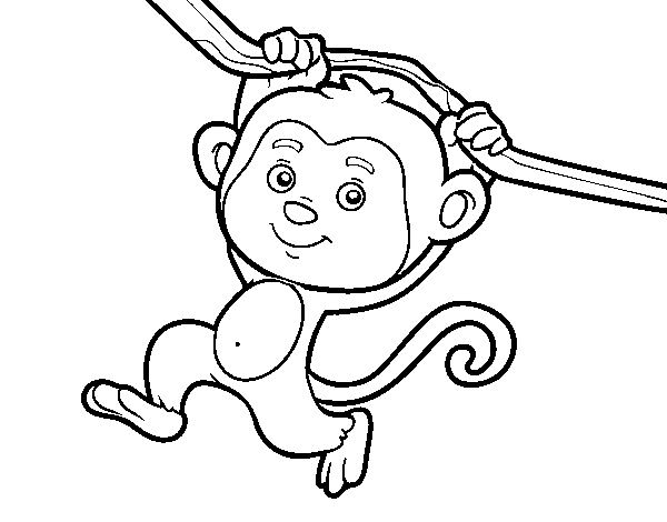 Dibujo de Mono colgado de una rama para Colorear - Dibujos.net