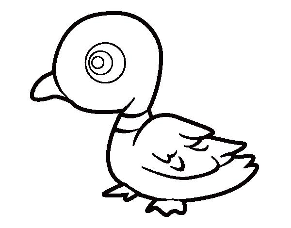 Dibujo De Pato De Río Para Colorear Dibujosnet