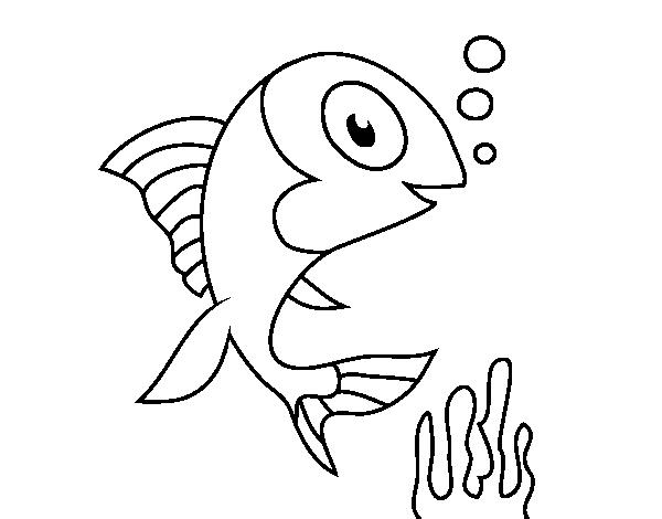 Dibujo De Pez De Mar Para Colorear Dibujosnet