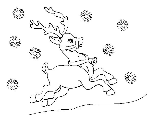 Dibujo De Reno De Navidad Para Colorear Dibujosnet