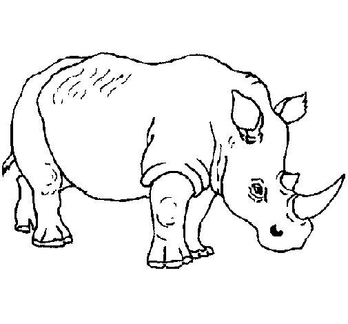 Dibujo de Rinoceronte 3 para Colorear - Dibujos.net