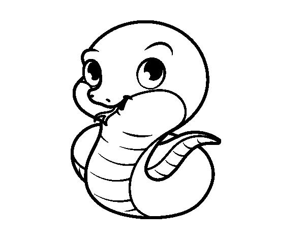 Dibujo De Serpiente Bebé Para Colorear Dibujosnet