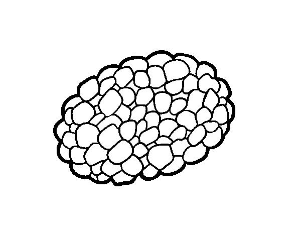 Dibujo de Seta trufa para Colorear - Dibujos.net
