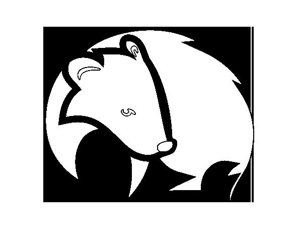 Dibujo de Tejón negro para Colorear - Dibujos.net
