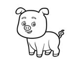 Dibujos De Cerdos Para Colorear Dibujosnet