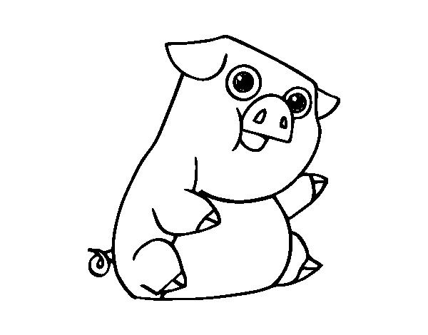 Dibujo de Un cerdo para Colorear - Dibujos.net
