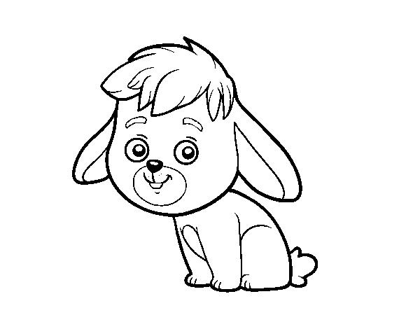 Dibujo de Un conejo de campo para Colorear - Dibujos.net