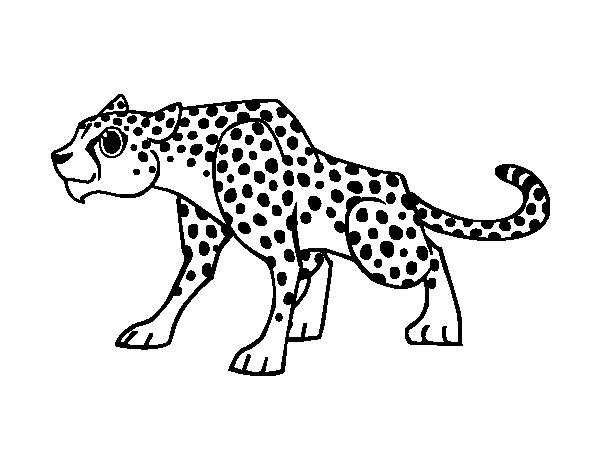 Dibujo de Un leopardo para Colorear - Dibujos.net