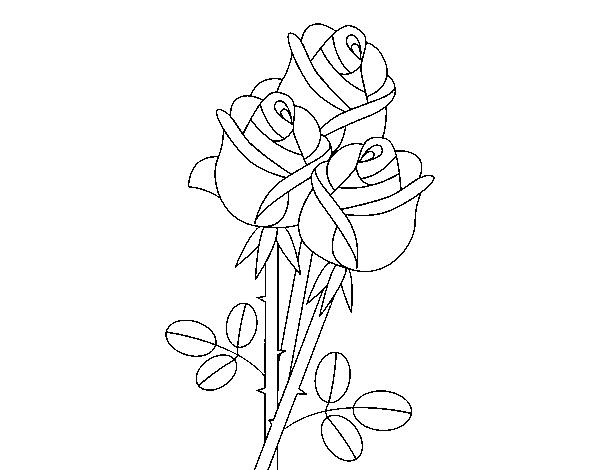 Dibujo De Un Ramo De Rosas Para Colorear